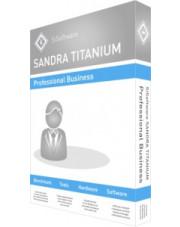 Sandra Titanium Professional Business 2020
