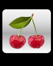 Kurs FL Studio 11 - od podstaw