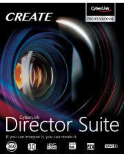 Director Suite 7