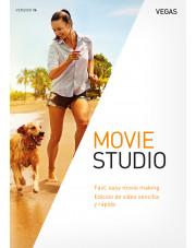 Vegas Movie Studio 14 ESD