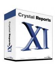 SAP Crystal Reports XI Developer