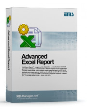 EMS Advanced Excel Report