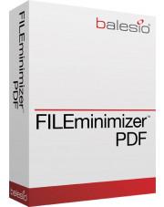 FILEminimizer PDF 7