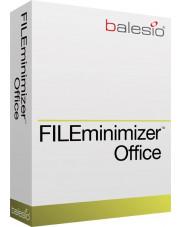 FILEminimizer Office 7