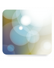 Kurs Adobe Flash Catalyst CS5