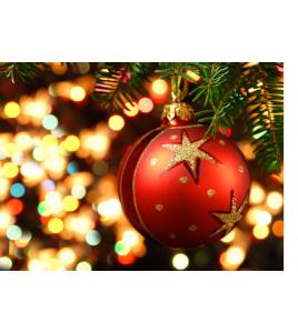 Wesołych Świąt życzy Vebo